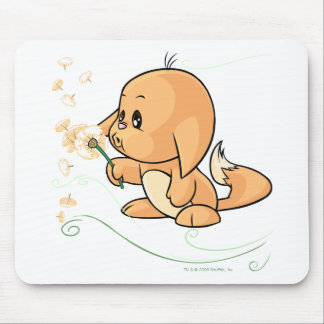 Orange Kacheek wishing on a dandelion Mouse Pad