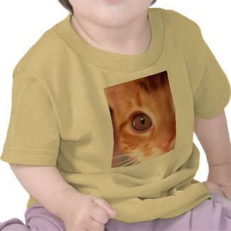 orange kitten spy t shirts