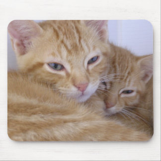 Orange Kittens Mouse Pad
