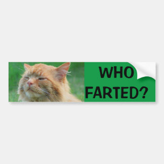 Orange Kitty asks Who Farted? Bumper Sticker