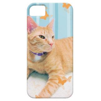 Orange Kitty Cat iPhone 5 Cases