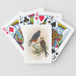 Orange-legged Hobby Falcon Gould Birds of Britain Bicycle Playing Cards