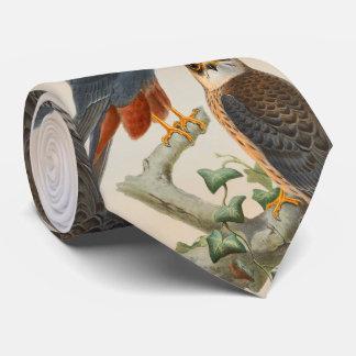 Orange-legged Hobby Falcon Gould Birds of Britain Tie