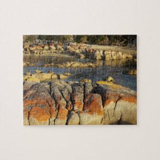 Orange Lichen on Rocks, Binalong Bay, Bay of Puzzles