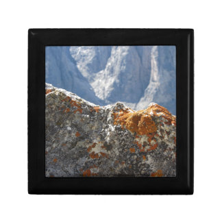Orange lichens growing on rock face gift box