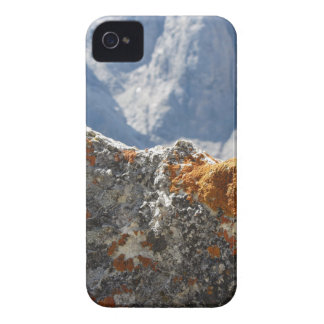 Orange lichens growing on rock face iPhone 4 Case-Mate case