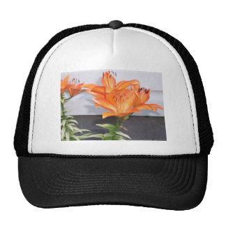Orange Lilies Cap