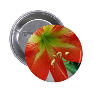 orange lily 6 cm round badge