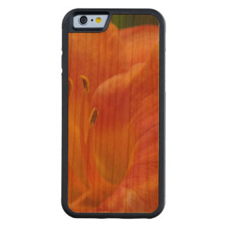 Orange Lily Carved Cherry iPhone 6 Bumper Case