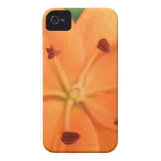 Orange Lily Floral Blackberry Bold Case