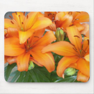 Orange Lily Flowers Mouse Pad