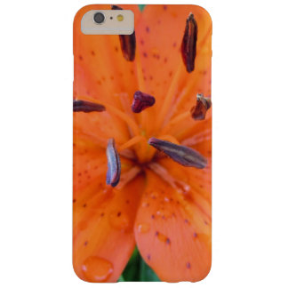 Orange Lily with water drops Barely There iPhone 6 Plus Case