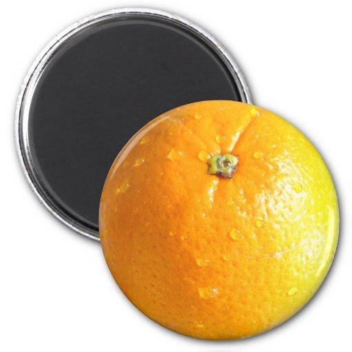 Orange Magnet 02