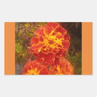 Orange Marigold Fall Morning Dew Sticker