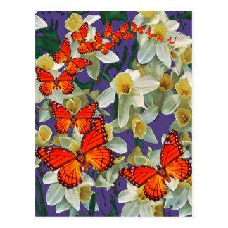 Orange Monarch Butterflies Narcissus Art Postcard