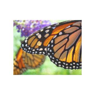 Orange Monarch Canvas art prints Butterflies Stretched Canvas Print