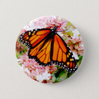 Orange Monarch on pink flowers 6 Cm Round Badge