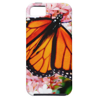 Orange Monarch on pink flowers iPhone 5 Case