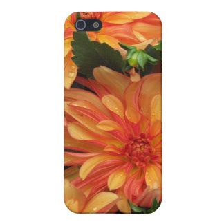 Orange Mums Speck Case iPhone 5 Case