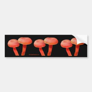 Orange Mushrooms Nature Photo Bumper Sticker