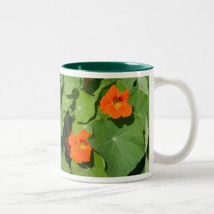 Orange Nasturtium Mug