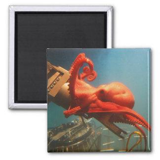 Orange Octopus Magnet