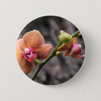 Orange Orchid 6 Cm Round Badge
