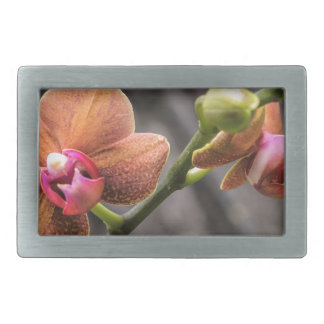 Orange Orchid Belt Buckle