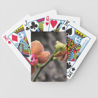 Orange Orchid Bicycle Playing Cards