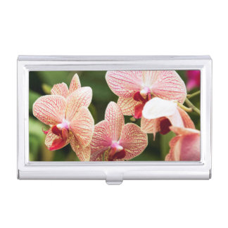 Orange Orchid Hybrid, South Africa Business Card Holders