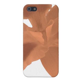 Orange Orchid iPhone 5/5S Cases