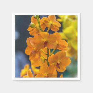 Orange orchids disposable napkin