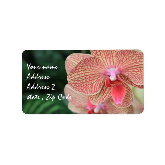 Orange Orchids Label