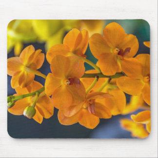 Orange orchids mousepad