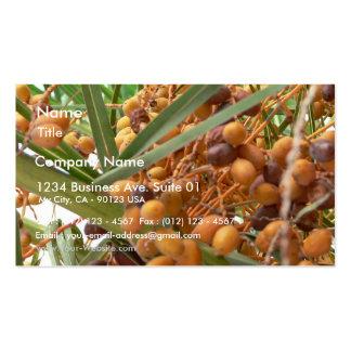 Orange Palm Tree Fruits Business Card
