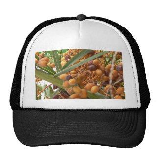 Orange Palm Tree Fruits Trucker Hats