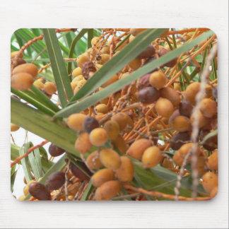 Orange Palm Tree Fruits Mouse Pad