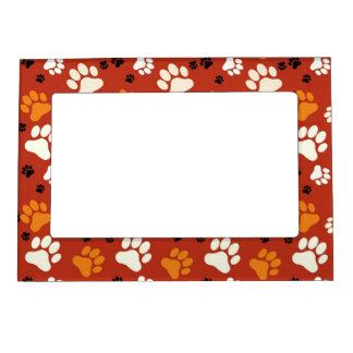 Orange Paw Print Magnetic Frame