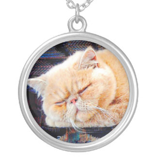 Orange Persian Cat Silver Plated Necklace