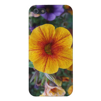 Orange Petunia iPhone 5/5S Case