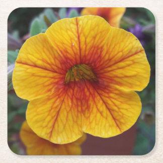Orange Petunia Square Paper Coaster