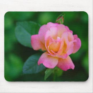 orange-pink rose mouse pad