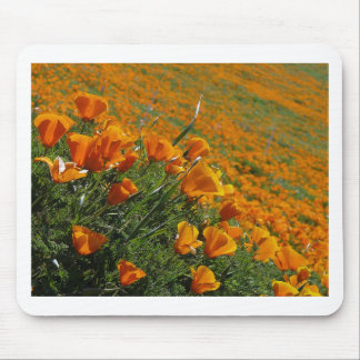 Orange Poppies Blowing In The Wind Mouse Pads
