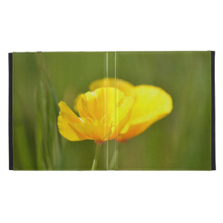 Orange Poppies iPad Folio Case