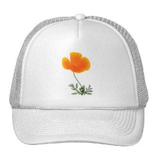 orange poppy cap