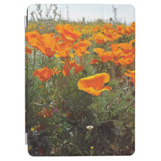Orange Poppy Field of Flowers