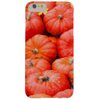 Orange pumpkins at market, Germany Barely There iPhone 6 Plus Case