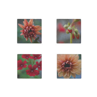 Orange & Red Floral Stone Magnet Set