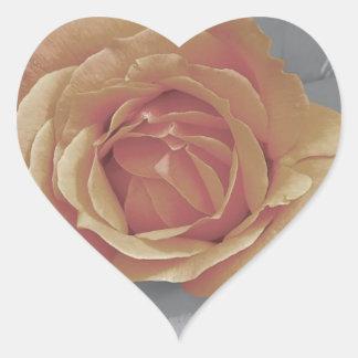 Orange rose blossoms print heart sticker