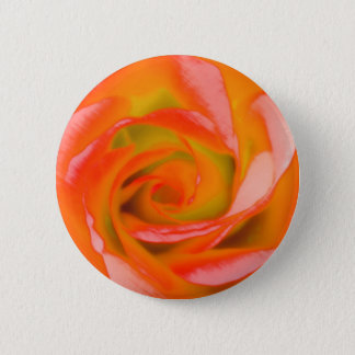 Orange Rose Close-up 6 Cm Round Badge